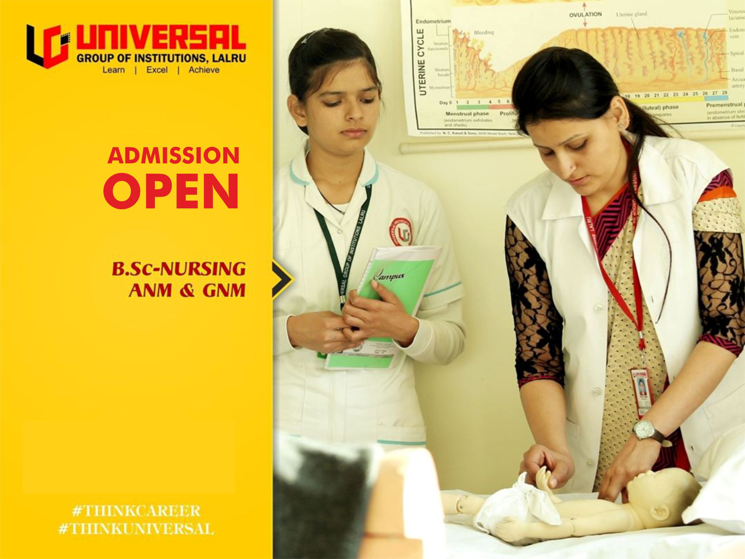 nursing college in punjab